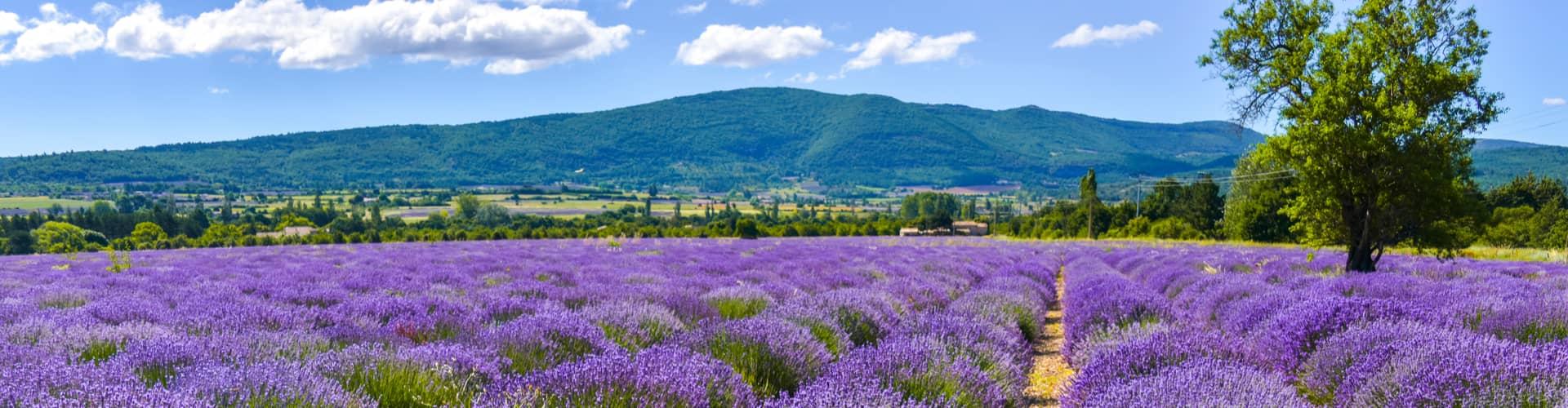 Kamperen in Provence-Alpes-Côte d'Azur