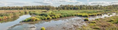 Camping Noord-Brabant