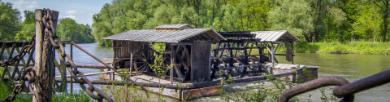 Camping Mura